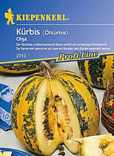Kürbis Olga Ölkürbis