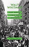 Jack Engles Leben und Abenteuer: Roman
