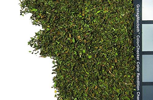 1kg – Tee – Kräutertee-Basis – lose Kräuter – Nana-Minze – Geschnitten – Spearmint