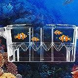 high-transparent self-floating multi-funzione pesce Incubatoio box doppio strato Fish Tank galleggiante Fish Aquarium Hatchery allevamento e Parenting box con Live Fry trappola
