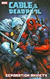 Image de Cable & Deadpool - Volume 7: Separation Anxiety
