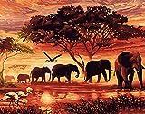 Nature Colour Wincy Shop-DIY-Malerei Set Malen nach Zahlen, auf Leinwand mit mit Tieren Holz-Rahmen Elefanten