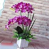 JFWMZyq Künstliche Blumen Set Wohnzimmer Dekoration Topfpflanzen Orchidee Blumenstrauß Lila 50 X 30Cm.