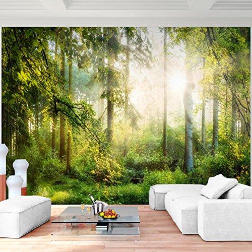 Fototapete Wald 396 x 280 cm Vlies Wand Tapete Wohnzimmer Schlafzimmer Büro Flur Dekoration Wandbilder XXL Moderne Wanddeko - 100% MADE IN GERMANY - Runa Tapeten 9176012a