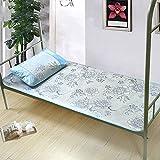 WENZHE Matratzen Sommer-Schlafmatten Strohmatte Teppiche Faltbar Schüler Schlafsaal Einzelbett, Eis Seide Matte, 11 Farben, 0.9/1.0/1.2m (Farbe : B, größe : 1.0×1.9m)