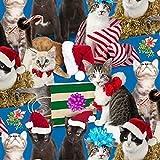 Fat Quarter Urlaub Friends Weihnachten Katzen Feline (2)