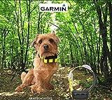 Garmin Radio Collare gps satellitari atemos per cane da caccia atemos k5