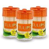 Tulips Wooden Toothpicks 250 Sticks (Pack of 3)