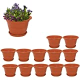 Meded Plastic Planter Pots With Bottom Tray, 8 inch, 12 Piece
