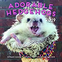 Adorable Hedgehogs Mini 2019 (Calendars 2019)