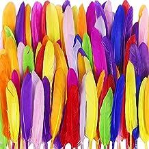 JPSOR 250 PCS Plumas Naturales Plumas de Colores Para Manualidades Decoracion
