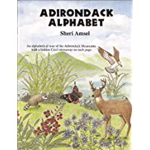 Adirondack Alphabet Book: An Alphabetical Tour of the Adirondack Mountains by Sheri Amsel (1994-12-01)