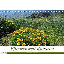 Pflanzenwelt Kanaren (Tischkalender 2018 DIN A5 quer): Traumhafte Bilder von einzigartigen Pflanzen der Kanaren. (Monatskalender, 14 Seiten ) ... www.teneriffaurlaub.es by Rainer Hasanovic, ©