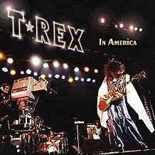 In America [Vinyl LP]