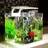 MVpower Aquarium Cascade Aquarium Table avec LED Lampe Poisson Aquarium avec Filtre 18L