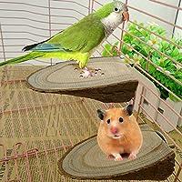 Greenlans - Soporte para plataforma de madera para perchas de hamster para jaula de pájaros