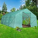 Jago – Invernadero con cubierta para jardín, terraza o balcón (para tomates, flores, varios tipos de plantas) – diferentes modelos a elegir
