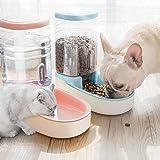 FRFJY Alimentador automático de Mascotas, Mascotas Gatos Perros Alimentador de Alimentos Dispensador de Agua 3.8 L
