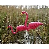 Par de flamencos rosas, para césped o estanque, adornos de plástico, 77cm
