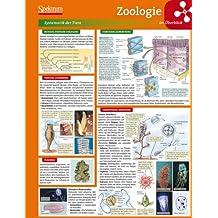Lerntafel: Zoologie im Überblick (Lerntafeln Biologie)