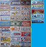 7amerikanische Kfz-Kennzeichenschilder, 31x 16cm, Reproduktionen