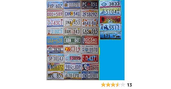 7 Amerikanische Kfz Kennzeichenschilder 31 X 16 Cm Reproduktionen Sport Freizeit