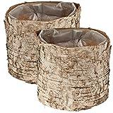 matches21 Birken Holz Pflanztöpfe Pflanzgefäße 2er Set rund Holztöpfe natur / braun aus Birkenrinde innen foliert je 10x9 cm
