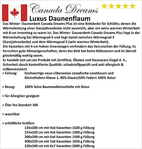 Canada Dreams Plus Luxus Winter Daunendecke Wärmegrad 4 Luxus Daunenflaum ☆☆☆☆☆ (135x200 cm) - 2