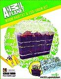 EDU Toys Set Wurmhaus Wurmbiotop Terrarium mit 6 Mini Lupendosen und Extra Lupenheft