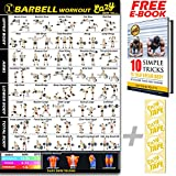 Barbell Gewichtheben bar Workout Banner Poster Big 51 x 73 cm Zug