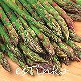 200pcs asperges vertes graines asperges bio sans OGM légumes Graines Plante en pot bricolage