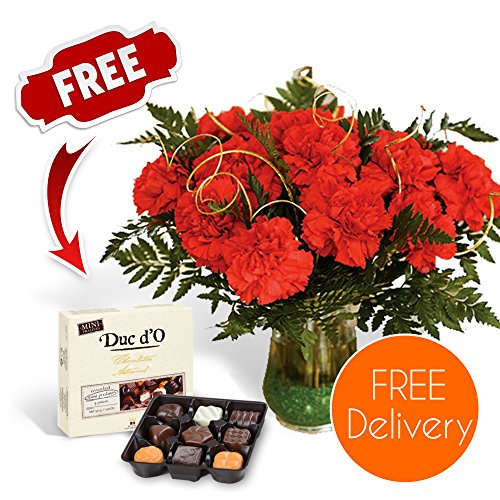 SendaBunch Fresh Christmas Flowers Delivered - 18 Luxury Red Carnations Bouquet with Chocolates, Flower Food and Ebook Guide - Perfect For Xmas Gifts