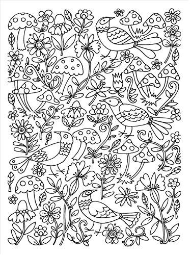 Arte antiestrés: 100 jardines para colorear (OBRAS DIVERSAS)_Plaza y ...