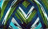 #5: WOA Fashions Acrylic Hand Knitting Yarn - Pack of 2 (Multi Green Blue)
