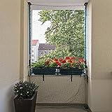 ALLEGRA Katzennetz für Balkon oder Fenster, Katzenschutznetz mit Halterung, Set mit Netz + 2X Teleskopstange ohne Bohren zum Klemmen (2m-3,75m + Netz 8x2m)