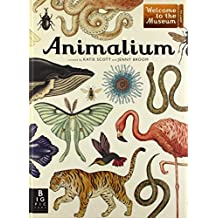 Animalium: Welcome to the Museum by Jenny Broom (2014-09-09)
