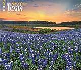 Telecharger Livres Wild Scenic Texas 2018 Calendar (PDF,EPUB,MOBI) gratuits en Francaise