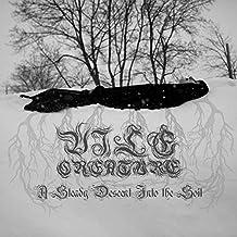 A Steady Descent Into the Soil [Vinyl LP]