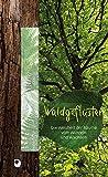 Waldgeflüster: Die Weisheit der Bäume vom Wurzeln und Wachsen (Präsente Premium) - Ilka (Hrsg) Osenberg-van Vugt