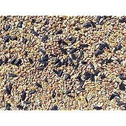 Pet Performance 12.55kg Four Season Garden Wild Bird Seed Food For Feeders & Bird Tables