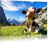 Kuh im Karwendelgebirge, Format: 80x60 auf Leinwand, XXL riesige Bilder fertig gerahmt mit Keilrahmen, Kunstdruck auf Wandbild mit Rahmen, günstiger als Gemälde oder Ölbild, kein Poster oder Plakat