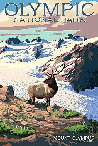 MT. Olympus und Elk-Olympic National Park, Washington, Papier, multi, 12 x 18 Art Print -