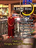 A Joyful Mind - Finding true happiness through the practice of meditation [OV]