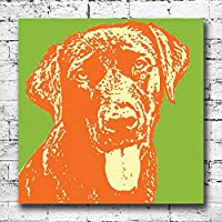 Cane Labrador Grande Tela Stampe. Cool Animal Lover Decor Pet divertente regalo, Green Orange, 30 x 30