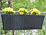 Pflanzkübel Blumenkübel Blumenkasten Rechteck Polyrattan LxBxH 60x19x20cm schwarz