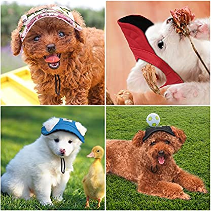 Pawaboo Dog Baseball Cap, Adjustable Dog Outdoor Sport Sun Protection Baseball Hat Cap Visor Sunbonnet Outfit with Ear… 7