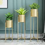 Crafter Metal Plant Stand with Planter, Gold, Standard