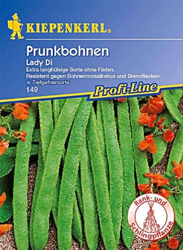 Sperli Gemüsesamen Prunkbohnen Lady Di, grün (Ernte Erde Womens)