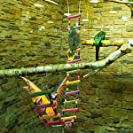 MEWTOGO 1.2 M Colorful Wooden Pet Ladder Bird Toy and a Swing - 18 Steps Rainbow Hanging Climbing Bridge for Parrot Training 9