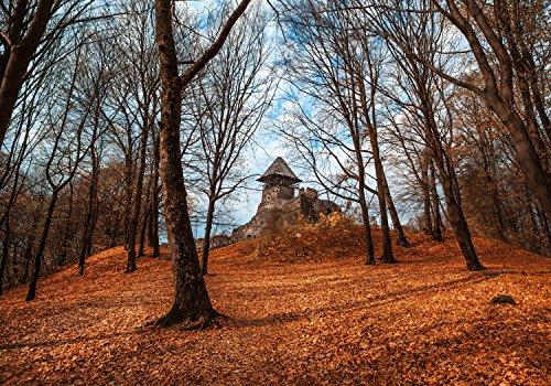 Fototapete Alte Burg im Herbst. Ukraine M 250 x 175 cm - 5 Teile Vlies Tapete Wandtapete - Moderne Vliestapete - Wandbilder - Design Wanddeko - Wand Dekoration wandmotiv24